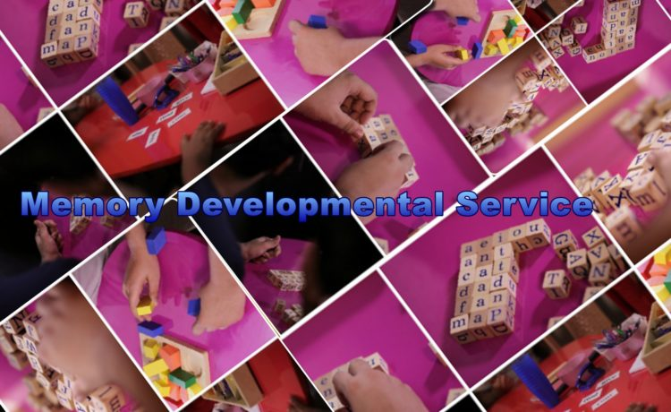 Memory Development Services